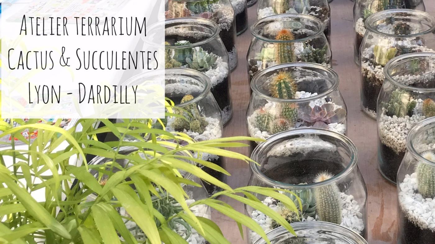 L Atelier Terrarium Cactus Succulentes En Video Osez Planter
